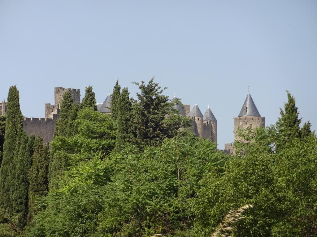 12 carcassonne