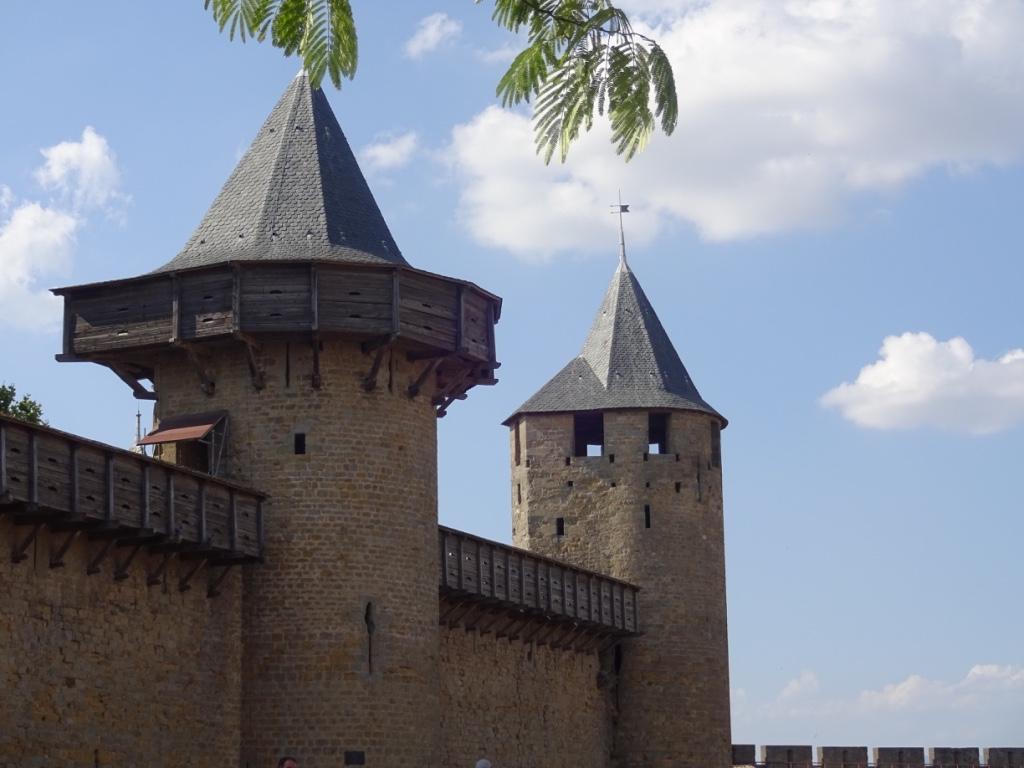 14 carcassonne