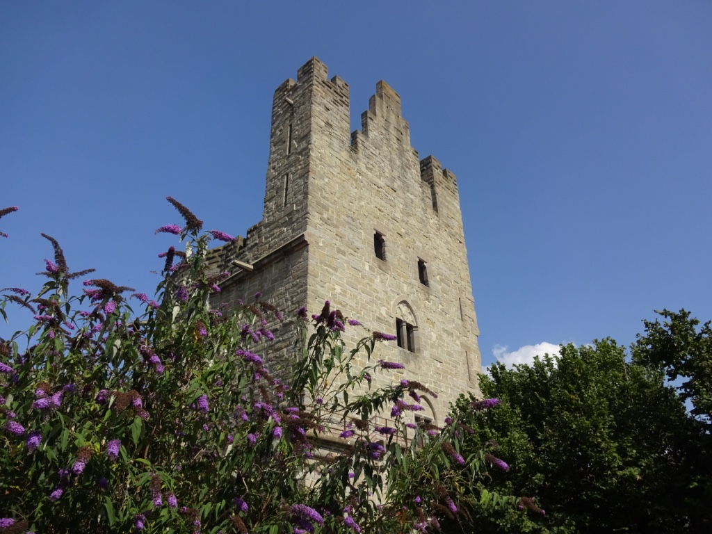 16 carcassonne