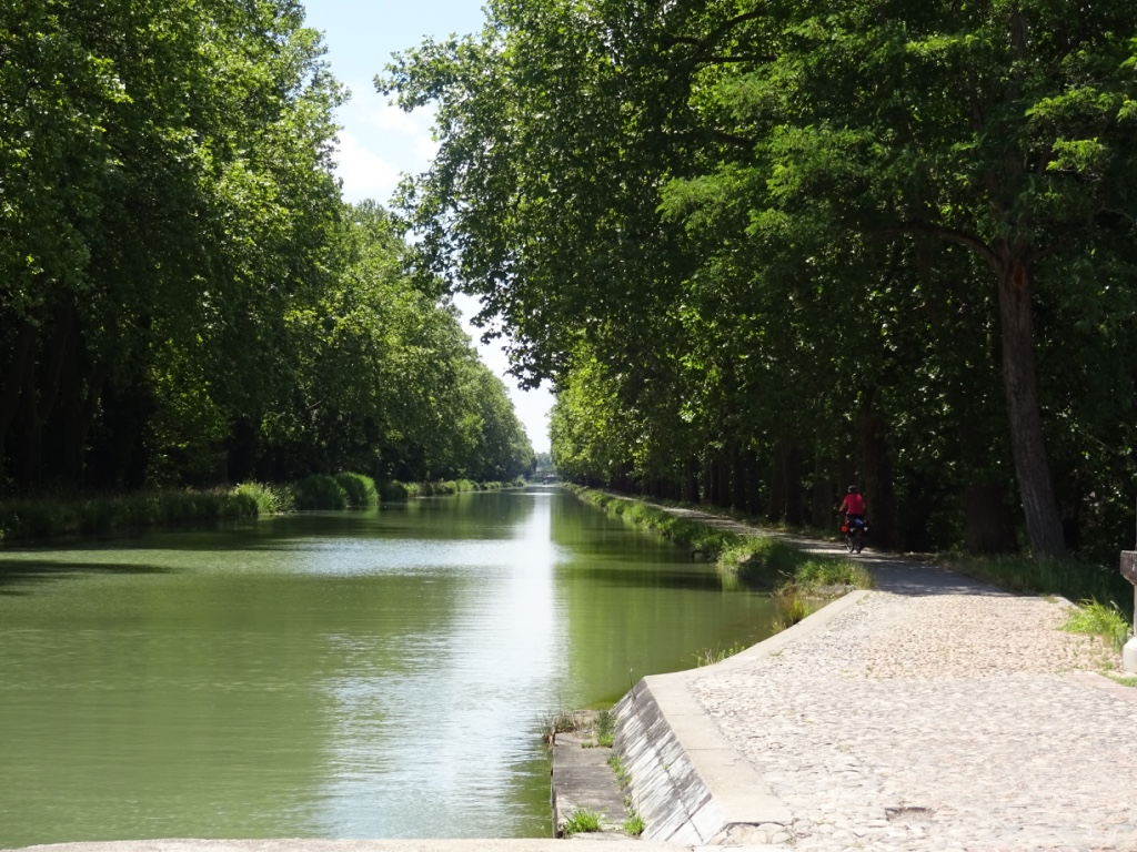 13 vue canal