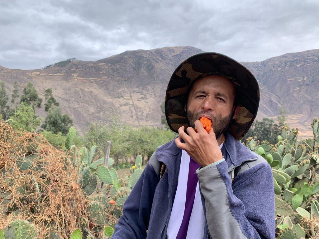 Juan mange un fruit du cactus