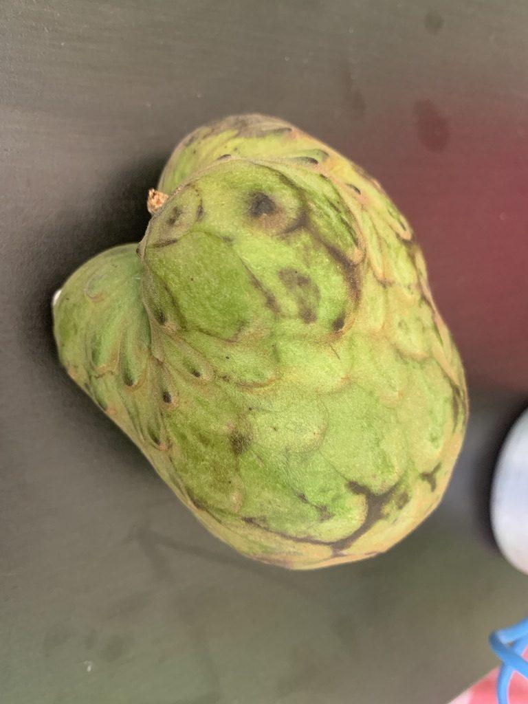 Mais quel est ce fruit ?