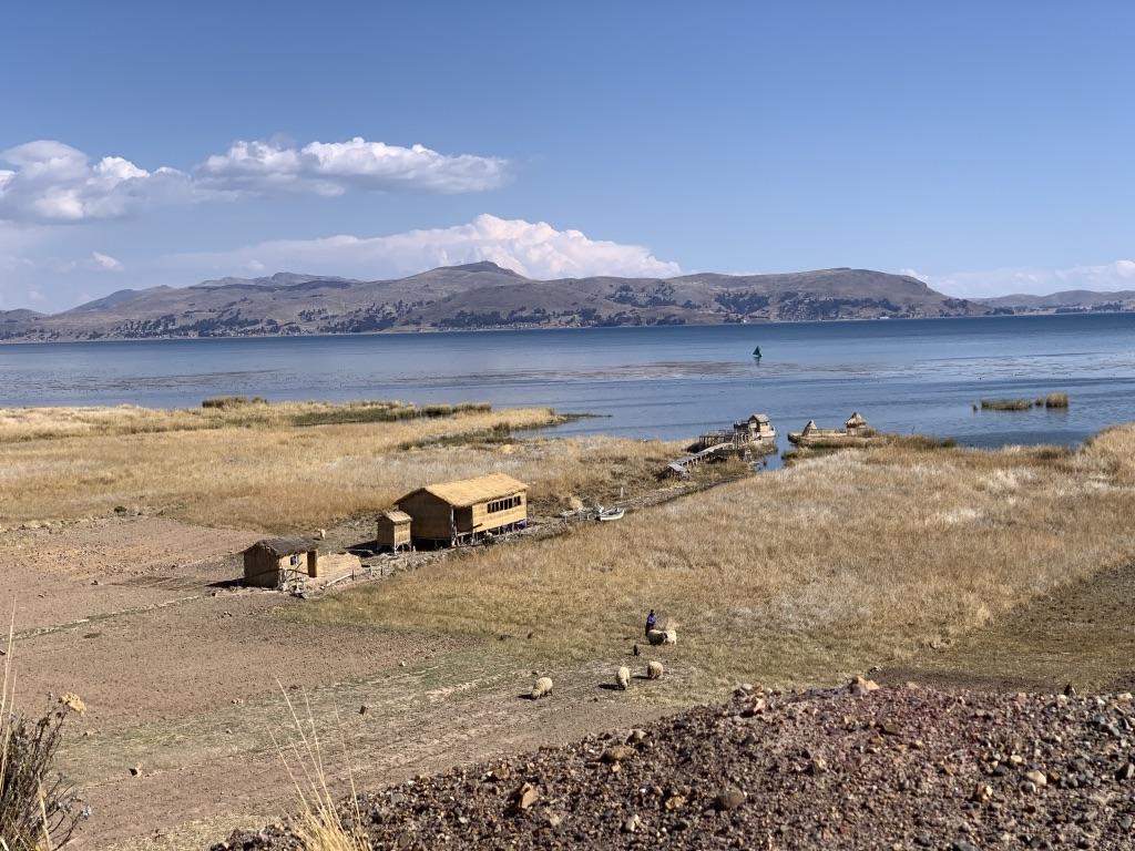 Habitats sur le titicaca