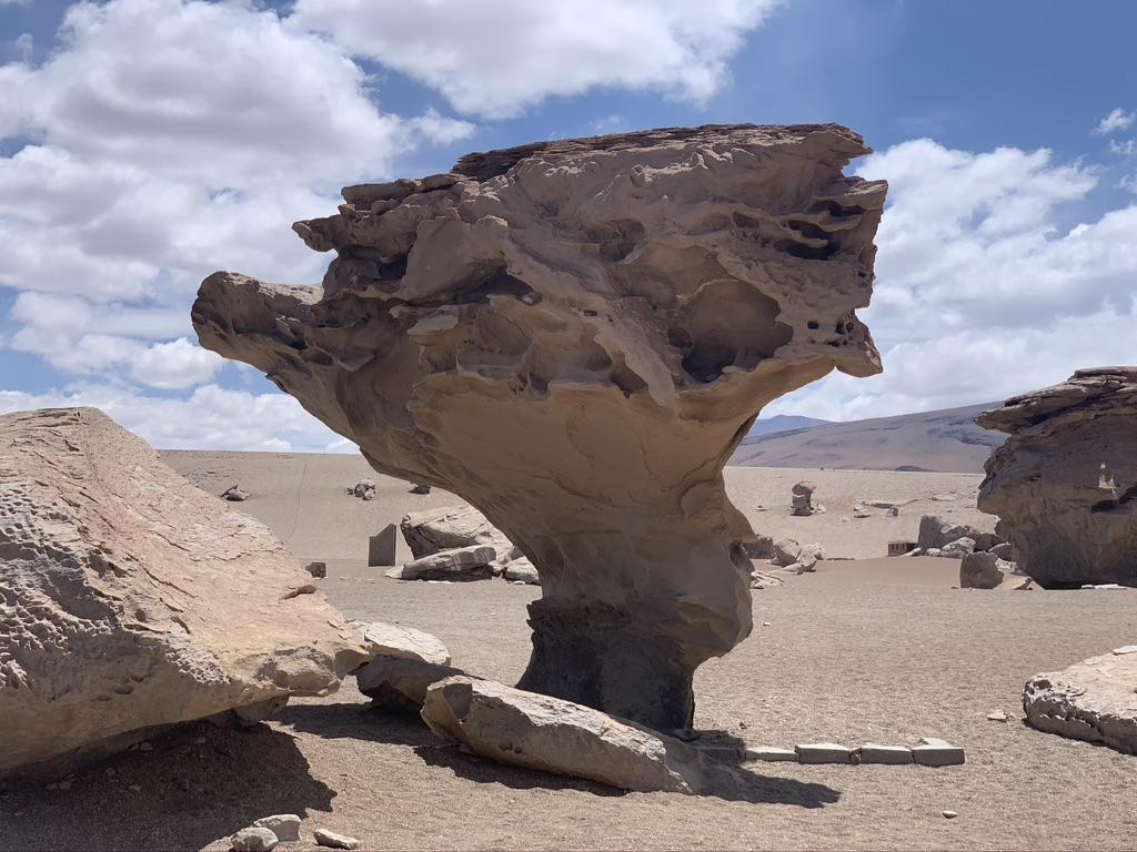 Un árbol de piedra
