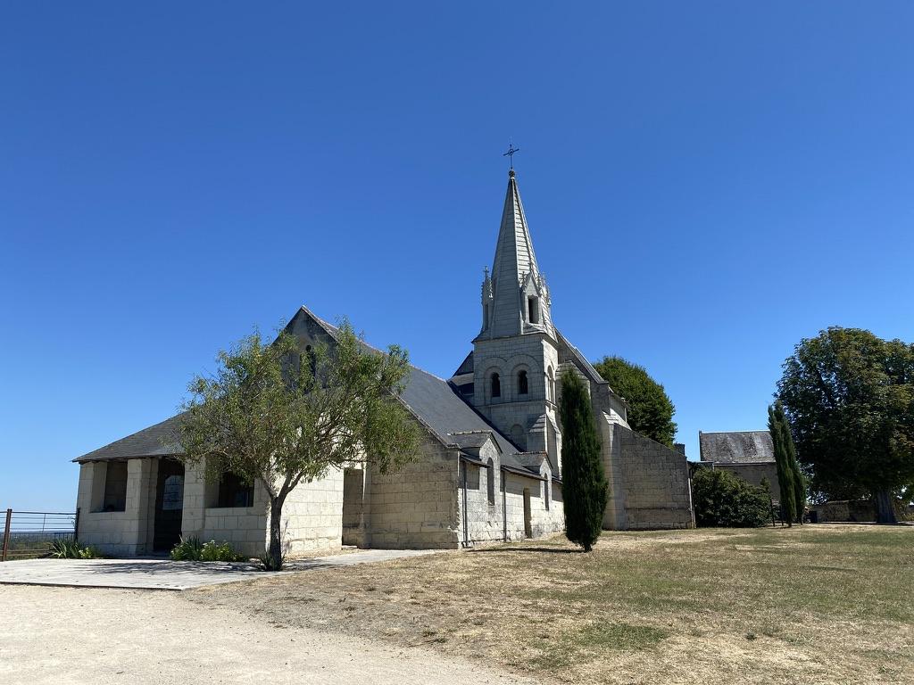 Eglise au milieu des vignobles