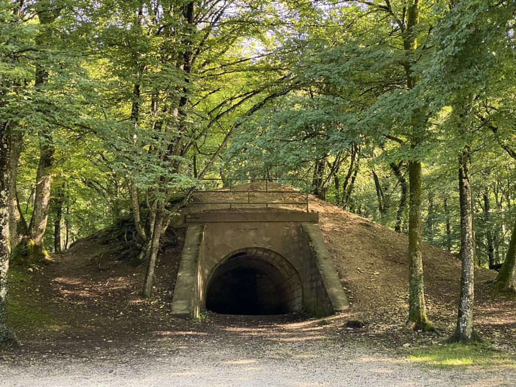 Tunnel de tranchée en 14:18 en forêt de Verdun