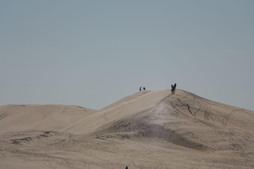 On se croirait dans le désert
